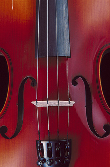 Thumbnail image for Violin-Vertical.jpg