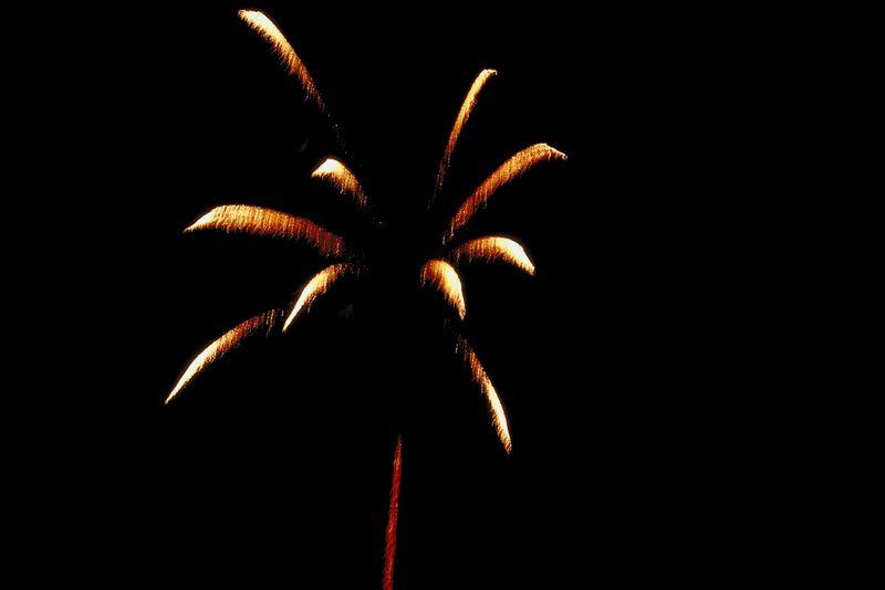 Fireworks-Vertical.jpg