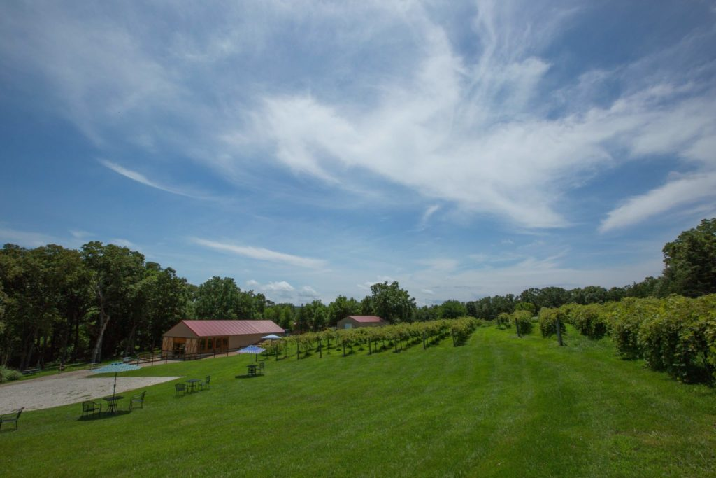 Martin Brothers Winery is located in the picturesque rolling hills of Gasconade County, Missouri.