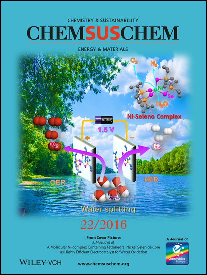 Research by Missouri S&T's Dr. Manashi Nath and colleagues was featured on the cover of the journal ChemSusChem