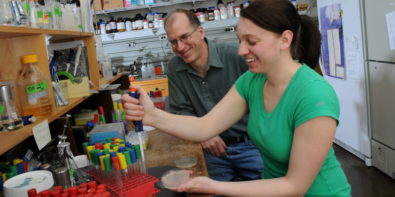 Researchers use glass to limit spread of drug-resistant bacteria