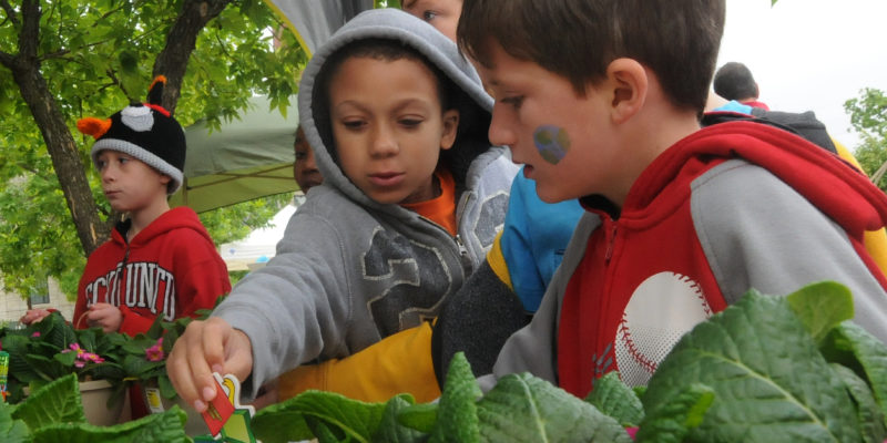 Take part in Missouri S&T's 16th annual Earth Day celebration
