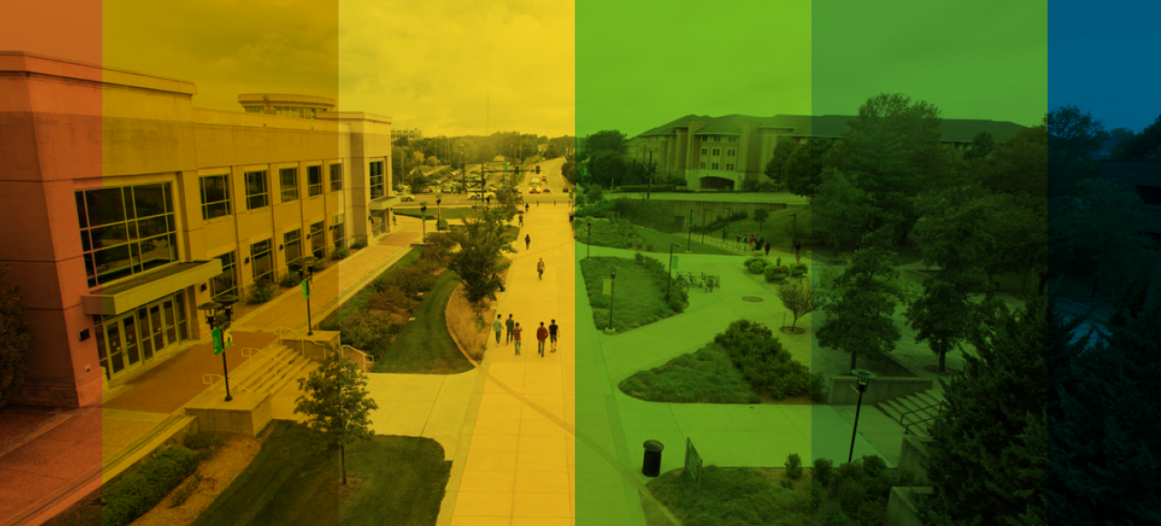 Missouri S&T's LGBTQ community is among the groups who find S&T to be less welcoming than majority students, according to a 2016 campus climate survey.