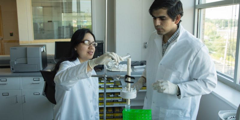 Missouri S&T biochemical engineer patents low-cost method of removing bacterial toxins from fluids