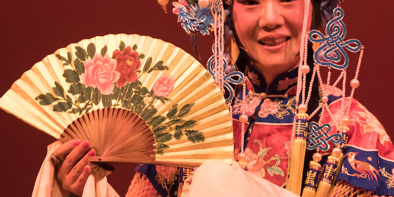 CANCELED: Missouri S&T students to host Chinese Spring Festival
