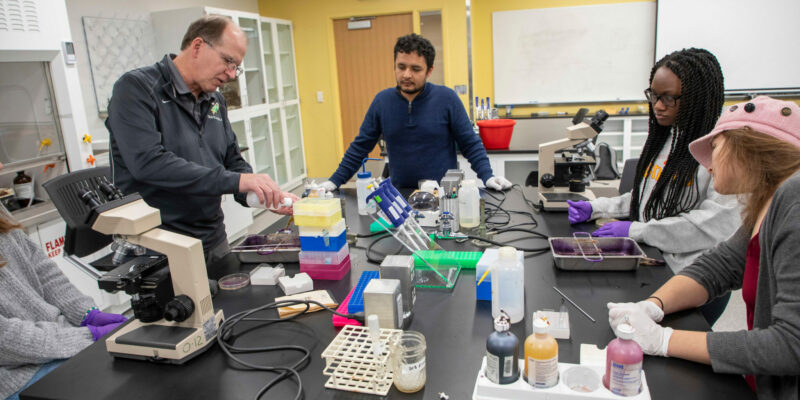 S&T adds medical lab science certification as a biological sciences emphasis area